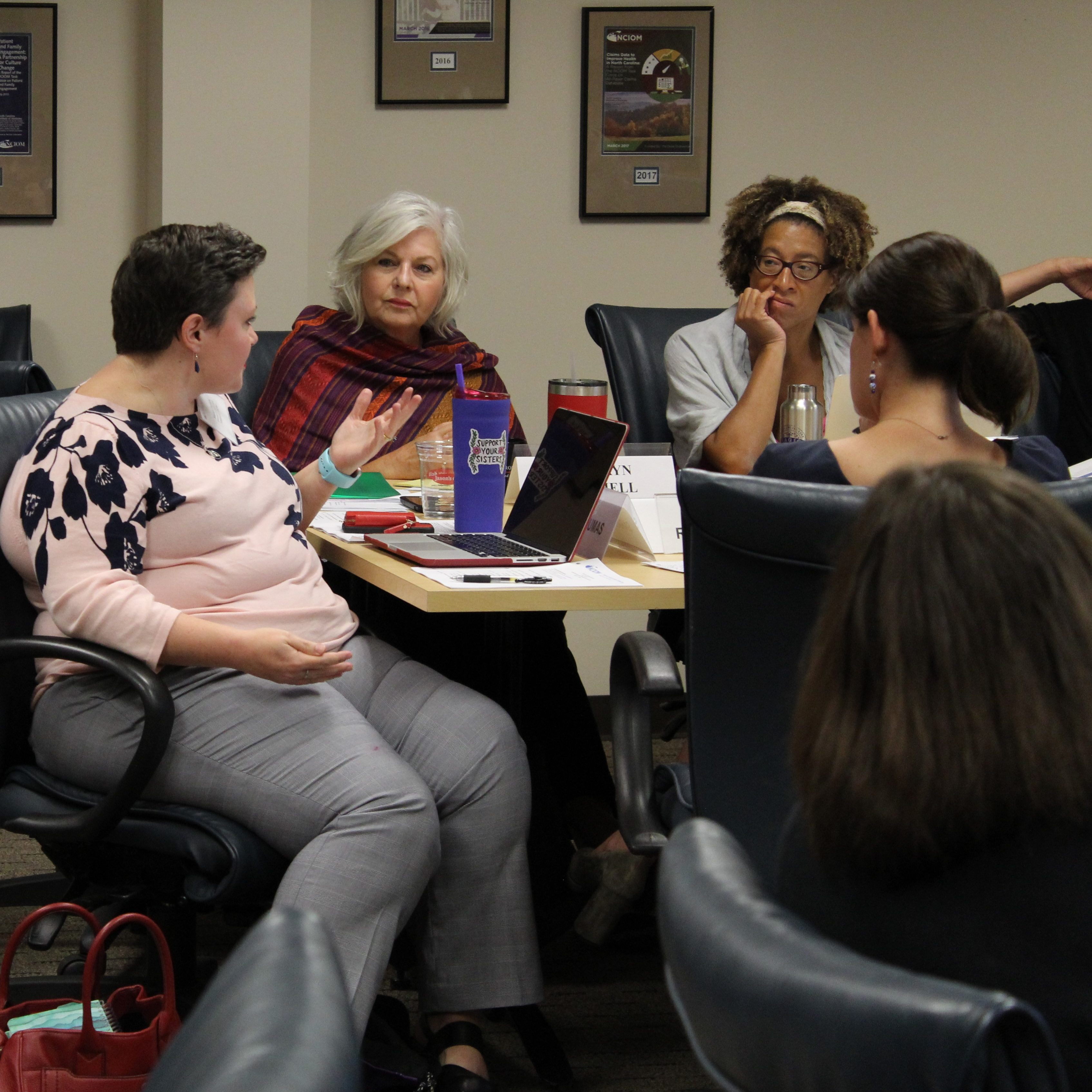 members of the perinatal task force having a discussion